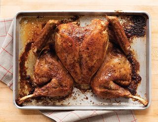 Sc turkey 1